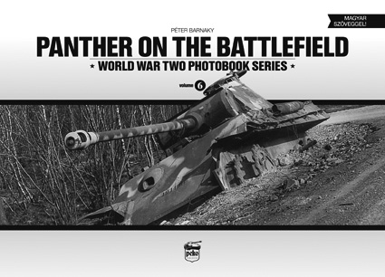 Panther on the Battlefiled. WW II Photobooks Ser., Vol. 6